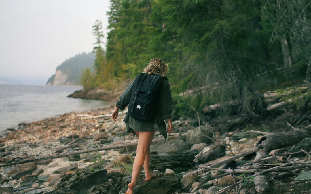 Step Out into The Wild